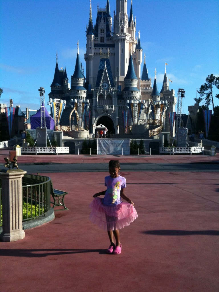 Disney World Princess Castle Walt Characters