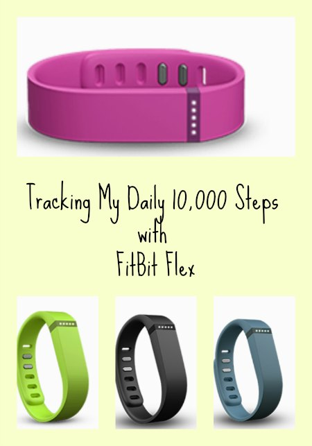 Tracking my daily 10 000 steps with fitbit flex fitbit nyc single