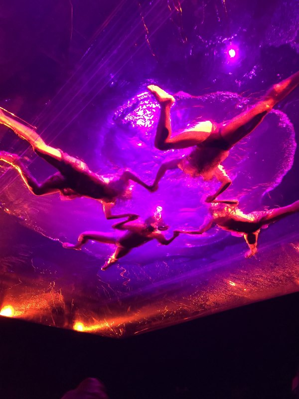 Fuerza Bruta is a Flying Good Time @fuerzabrutanyc