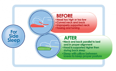 Backjoy Posture Sleep Pillow Review