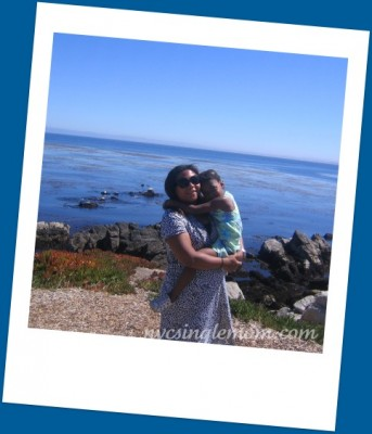 monterey single parents Ppdl@pgusdorglocated in pacific grove, ca , parents' place is a parent  education program of the pacific grove adult school (pgae) which offers age.