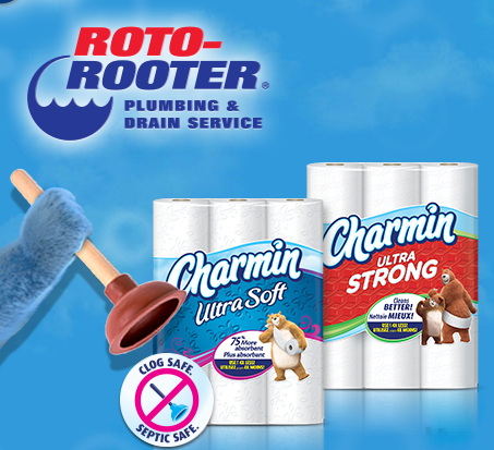 rotorooter com sweepstakes party planning tips and don t forget the charmin 4860