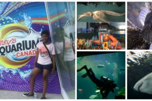 Kids of All Ages will Enjoy The Ripley's Aquarium of Canada @CityPASS @SeeTorontoNow #Toronto