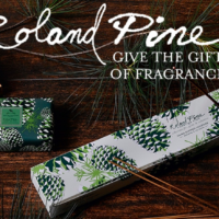 Soap & Paper Factory's Roland Pine Collection is Perfect for Holiday Gift Giving