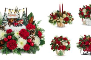 Teleflora Christmas Bouquets  Perfect for Every Holiday Event