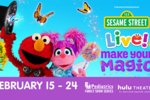 Entertainment archives nyc single mom - Sesame street madison square garden ...